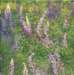 Dance of the Lupines