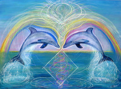 Dolphin Portal