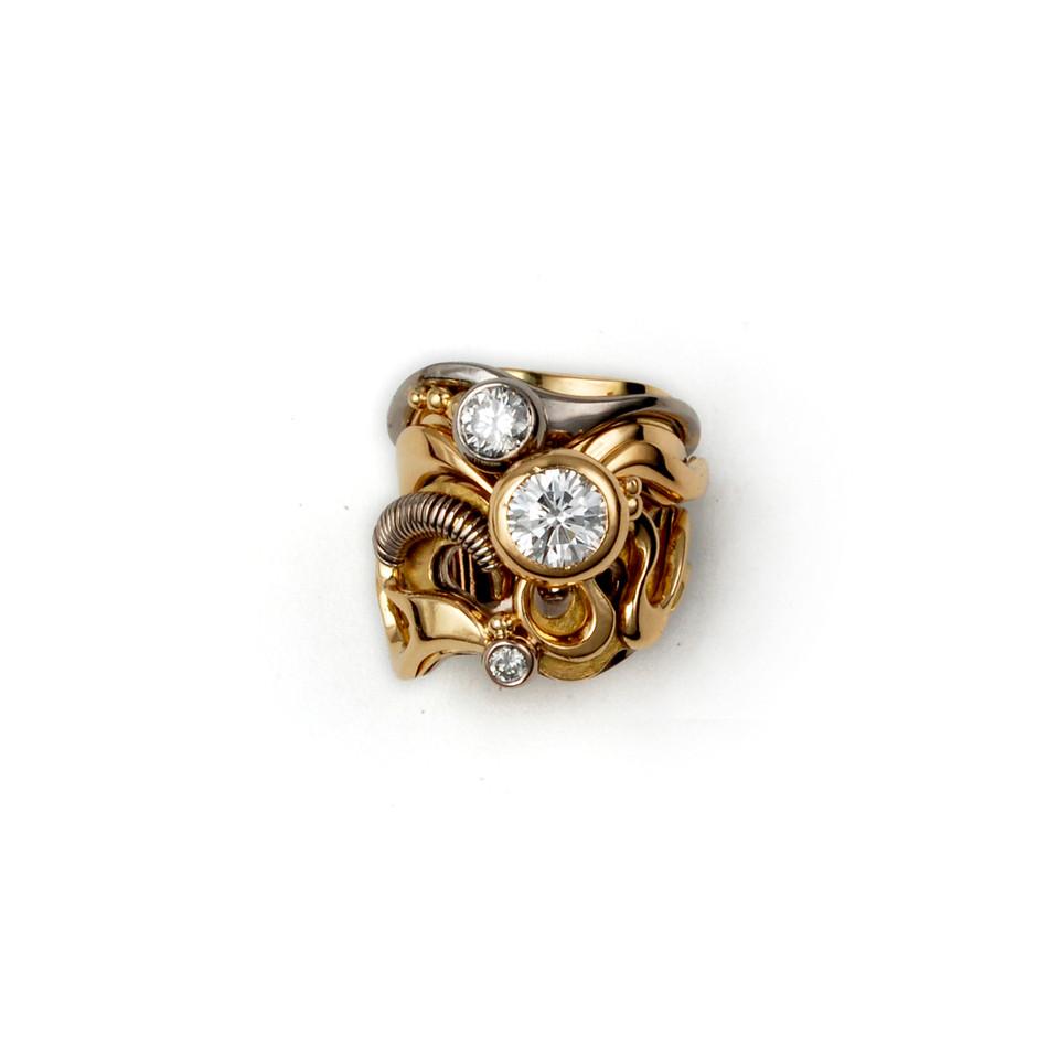 טבעת 3.jpg