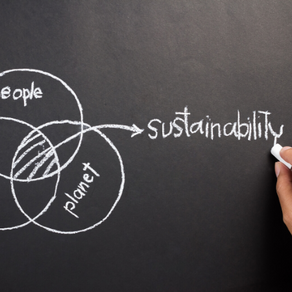 How to become more sustainable.