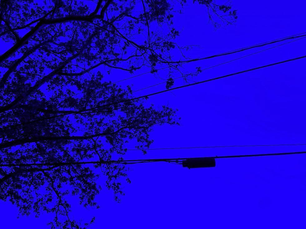 IMG_3744_edited.jpg