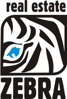 zebra4.jpg