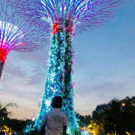 What to do with a 24 hour Layover in Singapore