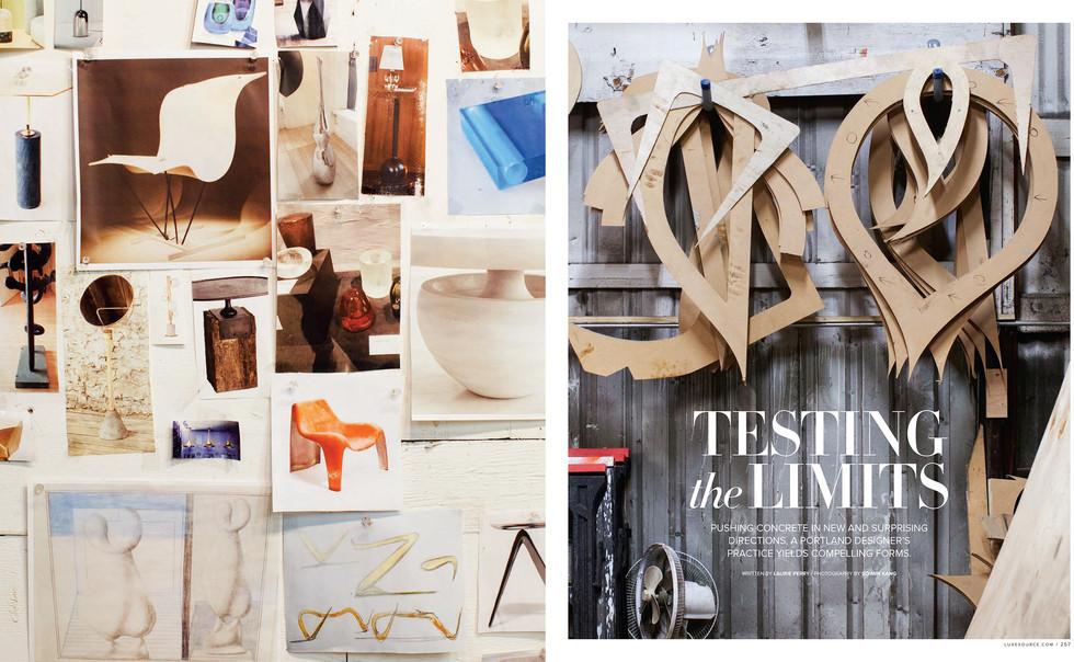 Neal Aronowitz for Luxe Interiors and Design Magazine