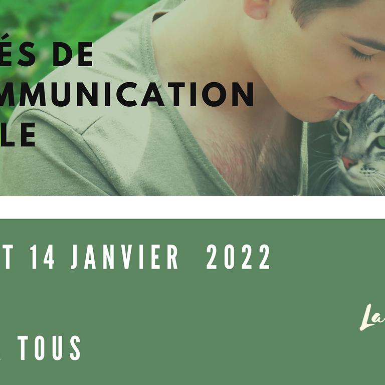 Stage les clés de la communication  animale  PARIS