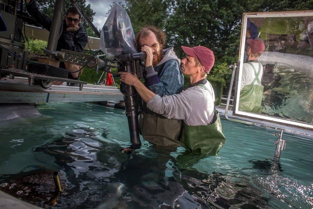 bfc rental t-rex underwater on set_3