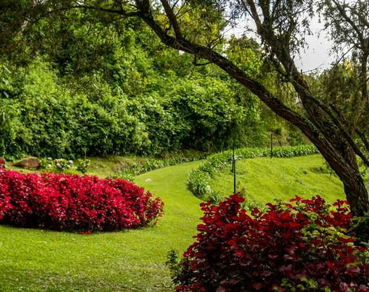 Jardines Posada Don Elicio Colonia Tovar Venezuela