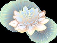 Oriental Lotus_edited.png