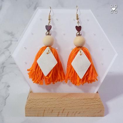 Tassel Earrings 6