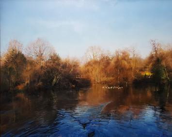 Haden Hill Lower Pool in January