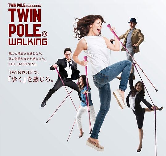 twin-pole-03.jpg