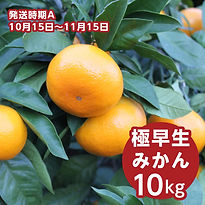 a_haraguchi_10.jpg