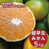 a_iwasaki_05.jpg