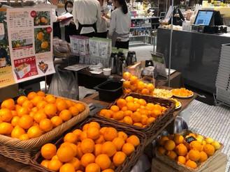 川口農園のフレッシュジュースも販売しております。