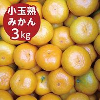 kodama_jyuku.jpg