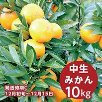 c_ishidi_10.jpg