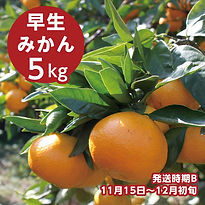b_miyagawa_5.jpg