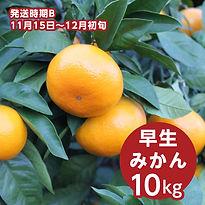 b_haraguchi_10.jpg