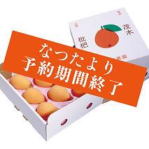 natsu_finish.jpg