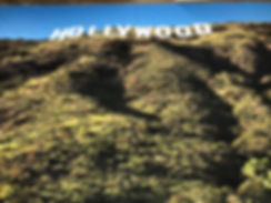 hollywood-hills-drop.jpg