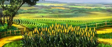 cornfield-scarecrow.jpg