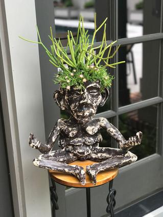 potted succulent arrangement