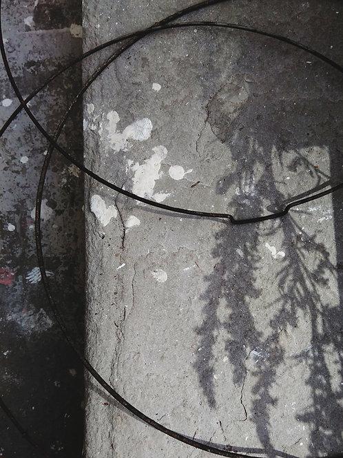 Grey | Giclée print