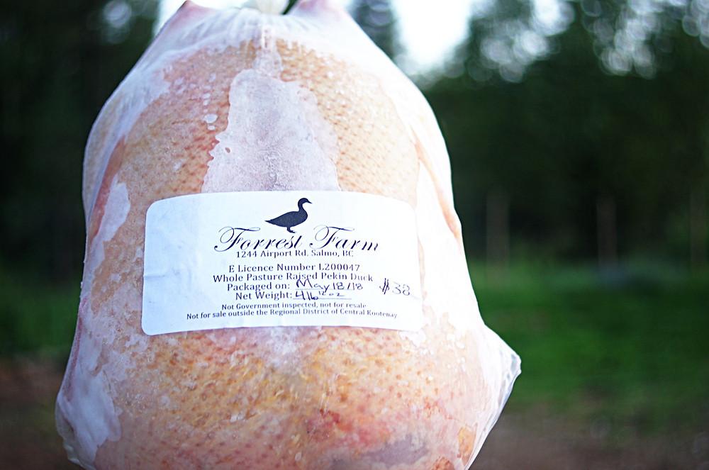 Whole Frozen Forrest Farm Duck