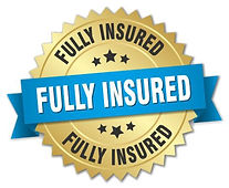Fully insured badge.JPG
