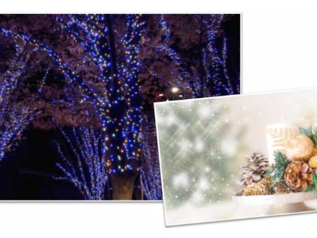 クリスマス・敬老の日のプレゼントに家事代行サービスはいかがですか?