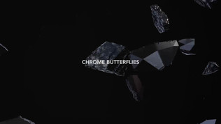 Chris Ramos - Chrome Butterflies  Used in Accenture Commercials