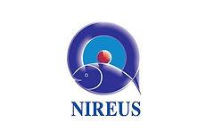 Nireus_2.jpg