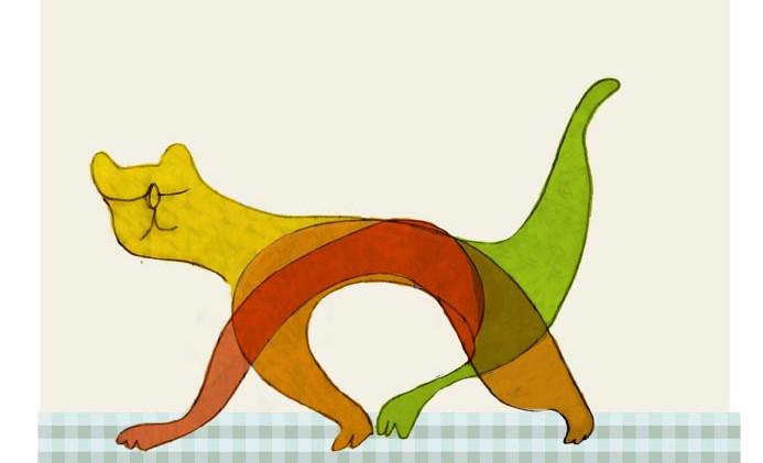 חתול צבעוני