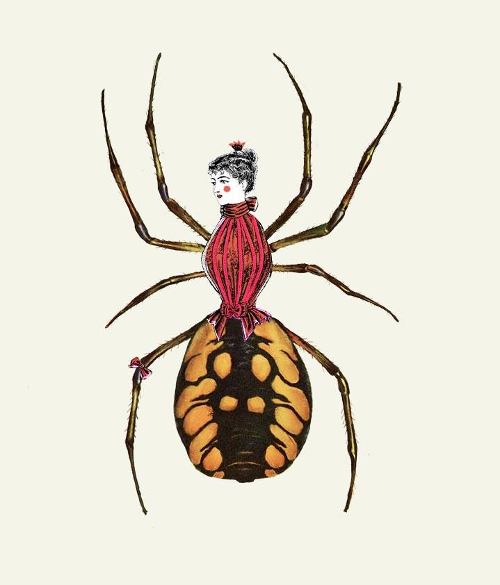 אשת העכביש. מתוך פרויקט לתיאטרון הקרון