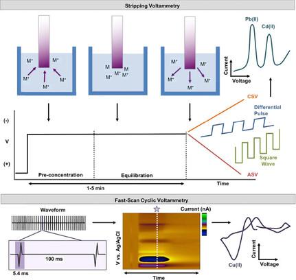 Novel Frontiers in Voltammetric Trace Metal Analysis: Towards Real Time, On-Site, In Situ Measuremen