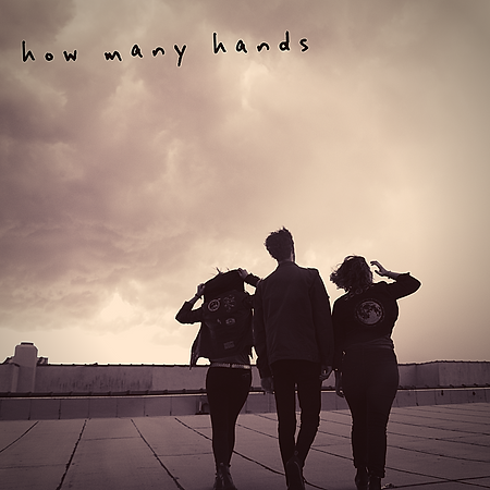 How Many Hands.png