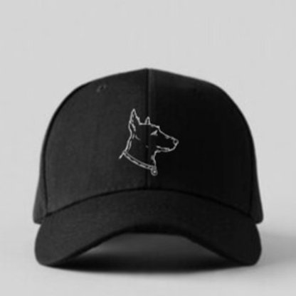 Slow and Steady ball cap