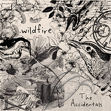 WILDFIRE_COVER_FINAL (1).png