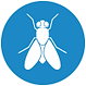 ambiental-insecto-moscas.png
