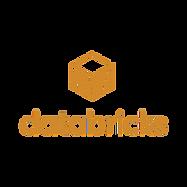data bricks logo.png