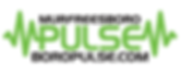 boropulse_logo.png