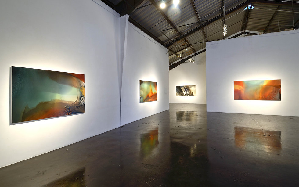Turner Gallery Install Shot 2013.jpg