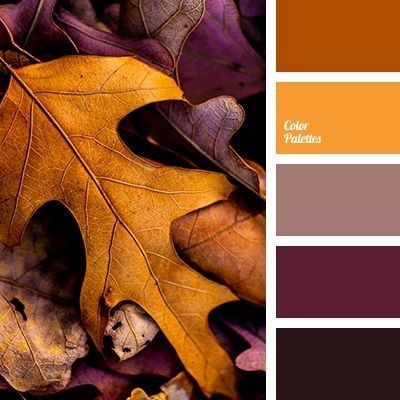 Picking the Perfect Palette for Your Fall Session