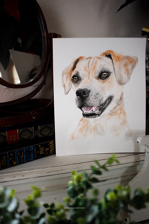 Pet Portrait in Watercolor