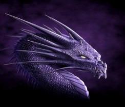 Dragon-Wallpaper-dragons-13975574-1280-1024