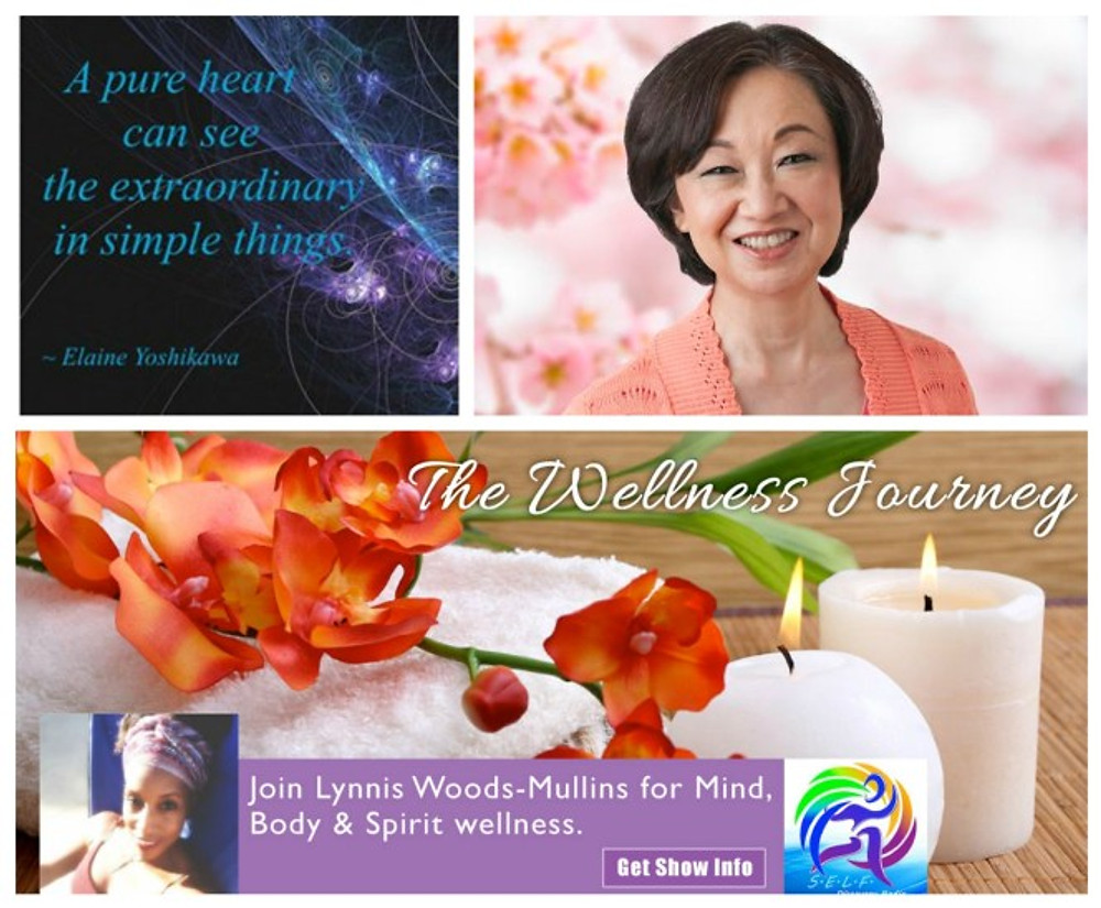 Elaine Yoshikawa Show Banner