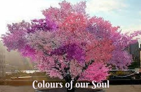 Colours of our Soul