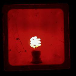 bulb in a box