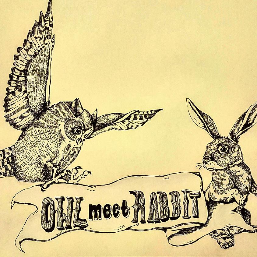 """Owl Meet Rabbit"" - Coffeehouse Session"