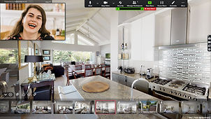 Zoom meeting example using virtual tour